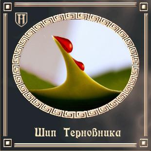 Шип Терновника